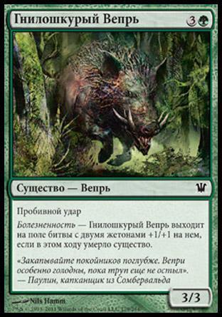 Гнилошкурый Вепрь (Festerhide Boar)