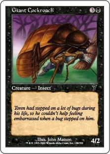 Giant Cockroach