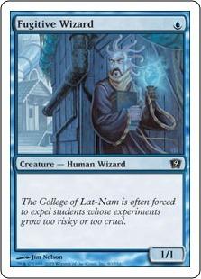 Чародей-изгнанник (Fugitive Wizard)