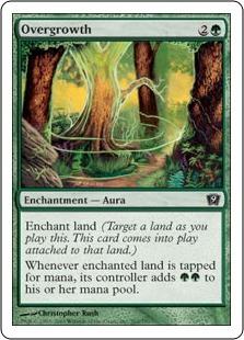 Избыточный рост (Overgrowth)