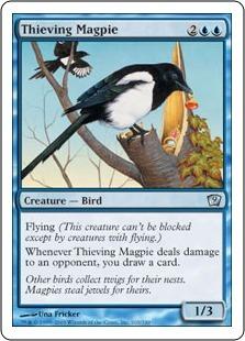 Сорока-воровка (Thieving Magpie)
